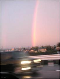 とある日の虹♪